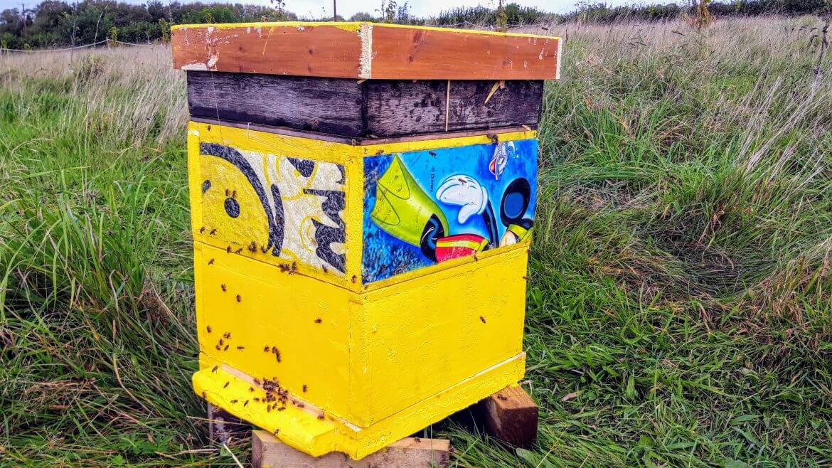 Plan Bee for Beach Waste!
